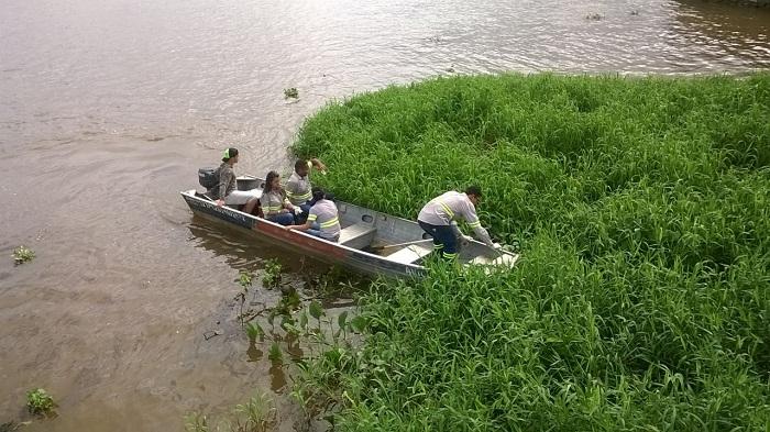 Limpeza das margens do Rio Araguaia